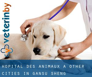 Hôpital des animaux à Other Cities in Gansu Sheng