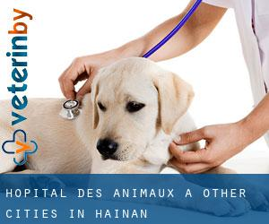 Hôpital des animaux à Other Cities in Hainan