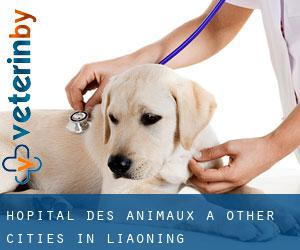 Hôpital des animaux à Other Cities in Liaoning