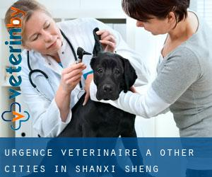 Urgence vétérinaire à Other Cities in Shanxi Sheng