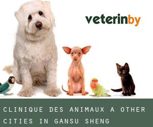 Clinique des animaux à Other Cities in Gansu Sheng