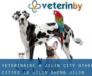 Vétérinaire à Jilin City (Other Cities in Jilin Sheng, Jilin Sheng)