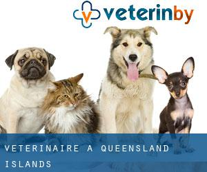 Vétérinaire à Queensland Islands