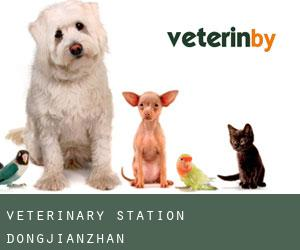 Veterinary Station Dongjianzhan