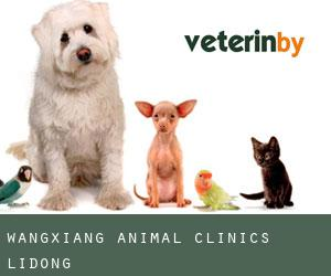 Wangxiang Animal Clinics Lidong